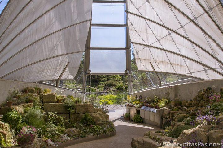 Invernadero de la Princess of Wales en Kew Gardens en Londres, Inglaterra