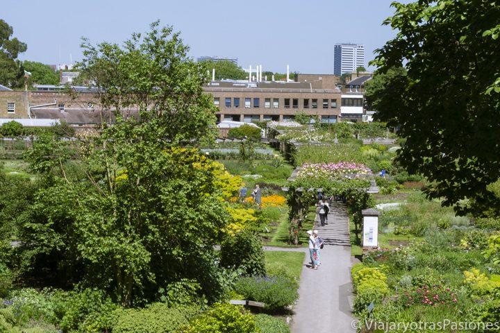 Panorámica de una zona del Kew Gardens en Londres, Inglaterra