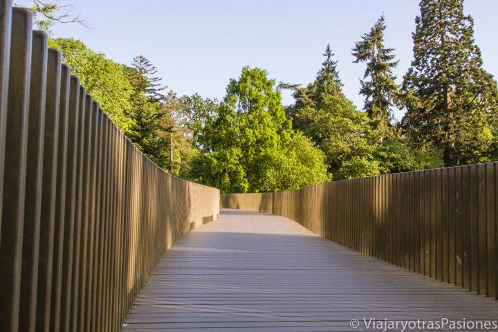 Puente en los Kew Gardens, en Londres
