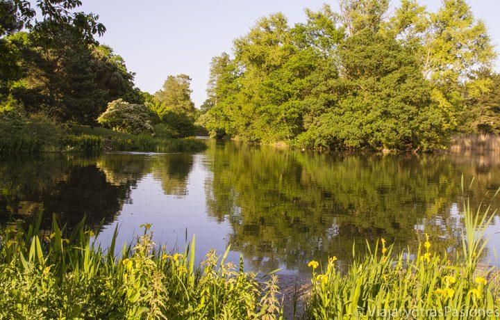 Tranquilo lago en los Kew Gardens en Londres, en Inglaterra