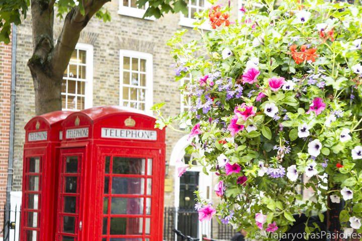Típica imagen de la cabina de teléfono roja, en Londres, con unas flores en primer plano