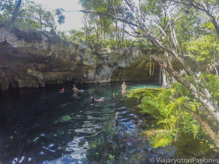 Baño en el Gran Cenote cerca de Tulum en México