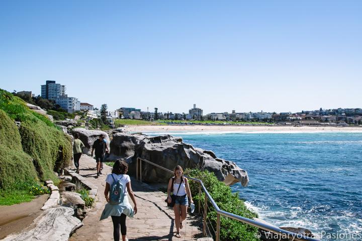 Zona del famoso Costal Walk y vista sobra Bondi Beach en Sydney, Australia