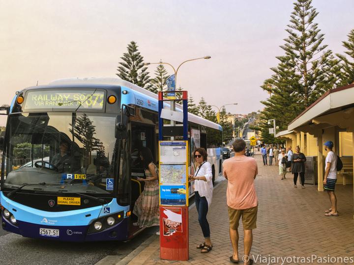 Estación de autobús en Coogee en Australia