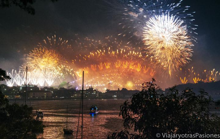 Panorámica de los fuegos artificiales del Año Nuevo en Sydney desde McKell Park