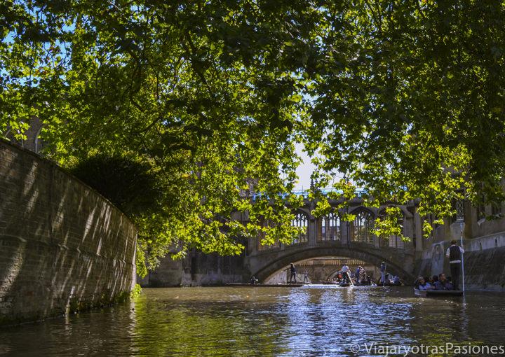 El característico río Cam en Cambridge, Inglaterra