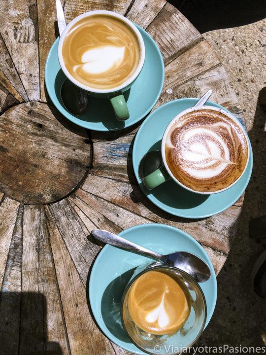 Imagen de un Flat White, un Piccolo y una Mocha en Australia
