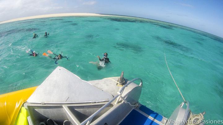 Haciendo snorkel en el Mackay Reef cerca de Cape Tribulation, Australia