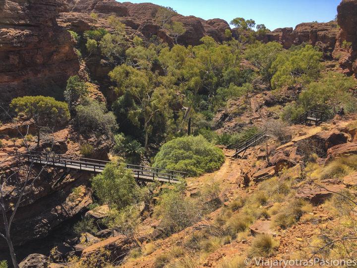 Panorama del hermoso jardín del Eden en el Kings Canyon, Australia