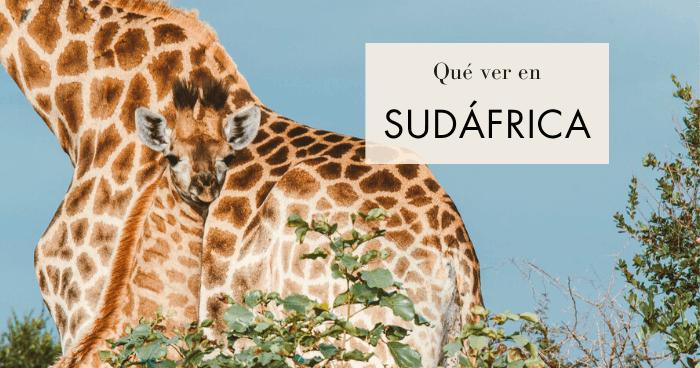 Qué ver en Sudáfrica: 10 lugares inolvidables