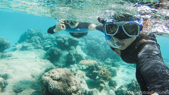 Pareja haciendo snorkel en la gran barrera de coral en Australia