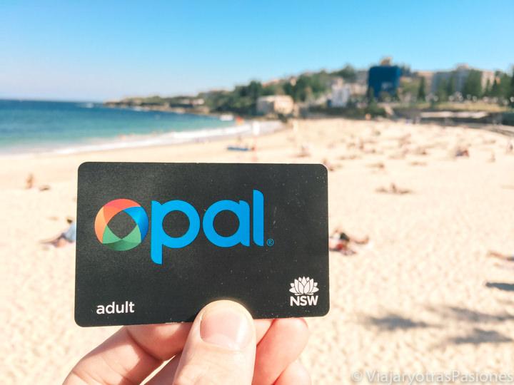 Imagen de la Opal Card, la tarjeta del transporte públicos en Sydney