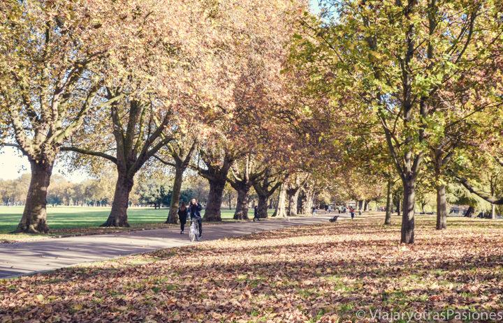 Hermosa imagen otoñal del Victoria Park en Londres, Inglaterra
