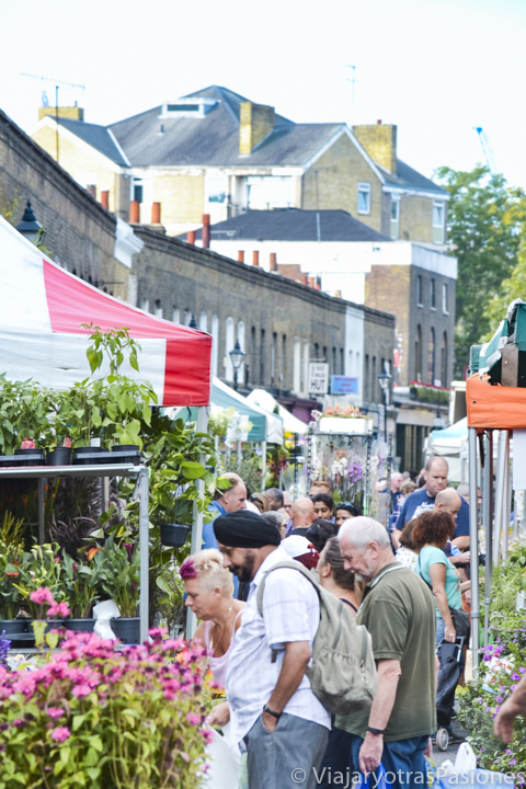 Vista del famoso Columbia Flower Market cerca de Brick Lane en Londres, Inglaterra