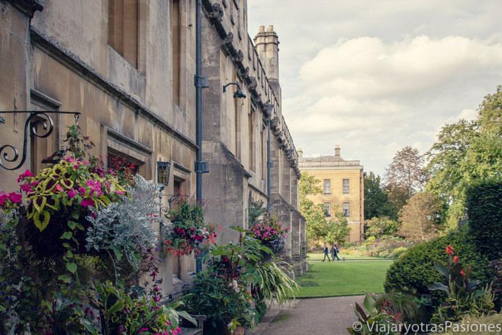 Bonitos jardines en el famoso Magdalen College en Oxford, Inglaterra