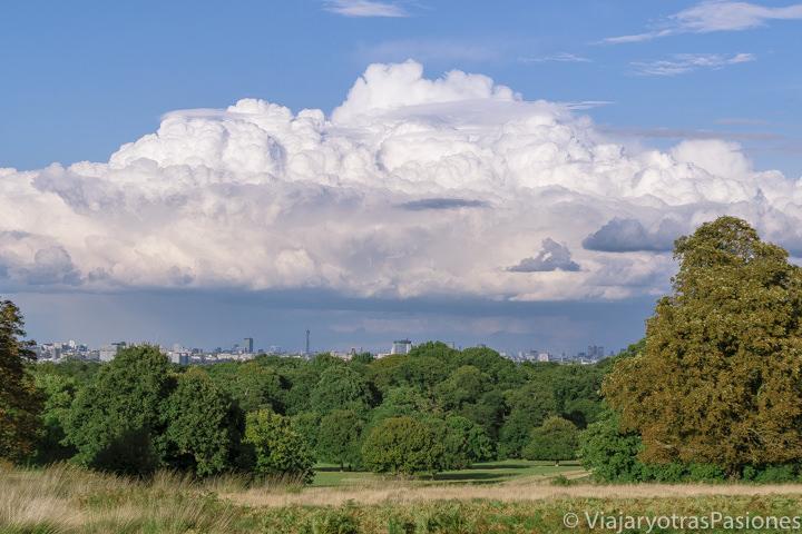 Espectacular panorama del parque de Richmond en Londres, Inglaterra