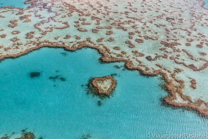 Espectacular imagen del Heart Reef en la gran barrera de coral en Australia