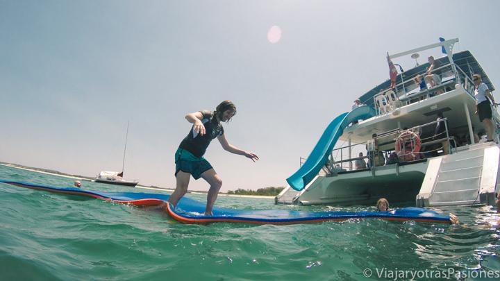 Jugando en el barco para ver los delfines en la bahía de Port Stephens, Australia