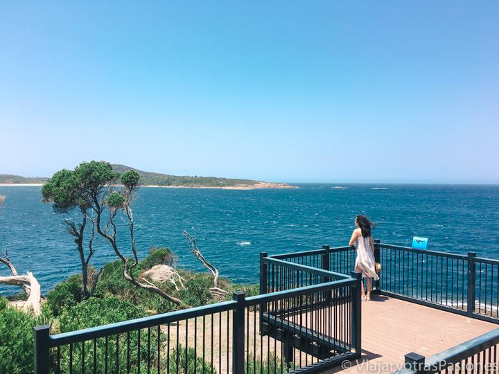 Bonita vista desde el Barry Park Lookout en Port Stephens, Australia