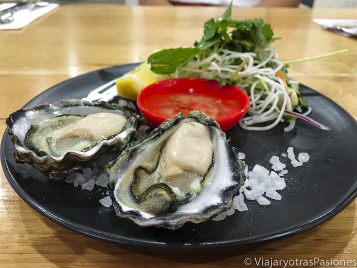 Delicioso plato de ostras en un restaurante en Fingal Bay, Australia