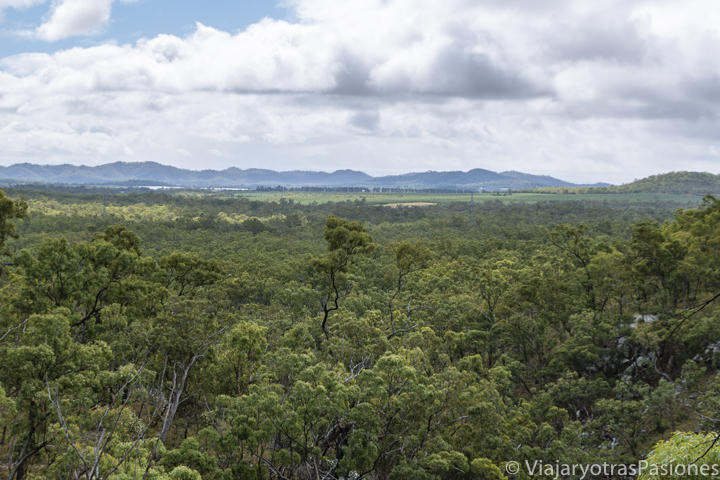 Bonita vista de los Atherton Tablelands en los alrededores de Cairns, Australia