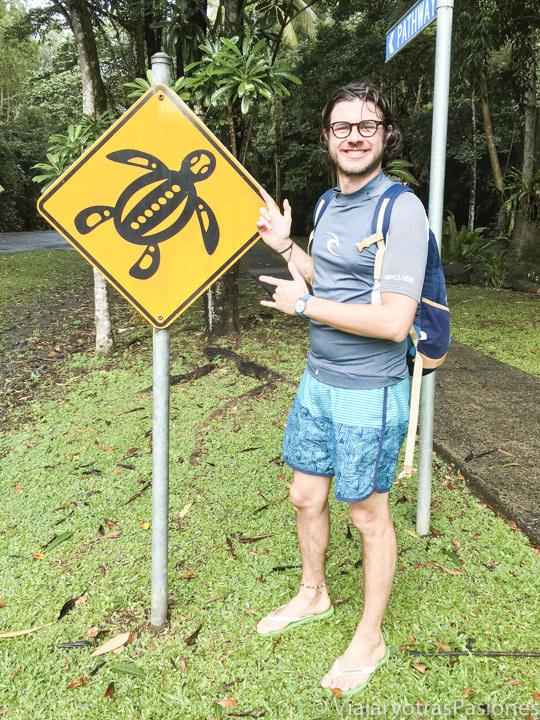 Divertido señal con una tortuga marina en Cape Tribulation, Australia