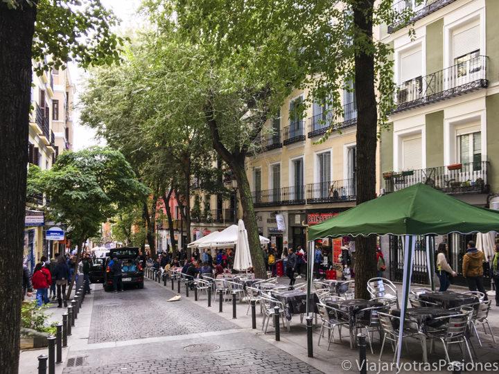 Característica calle de los restaurantes indios en Lavapiés, uno de los barrios mas bonitos de Madrid