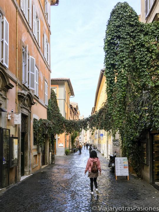 Callejeando en via della Lungaretta en el famoso barrio de Trastevere, Roma