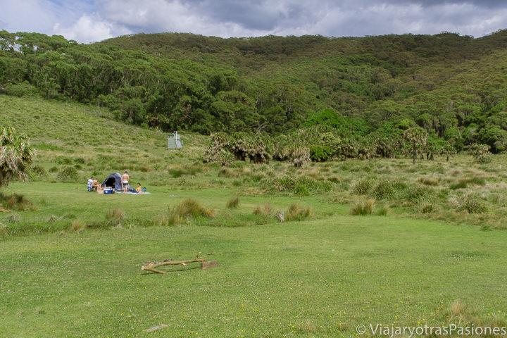 Naturaleza en el North Era Campground cerca de Sydney, Australia
