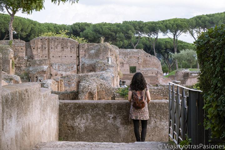 Explorando el parque arqueológico del cole Palatino en Roma, Italia
