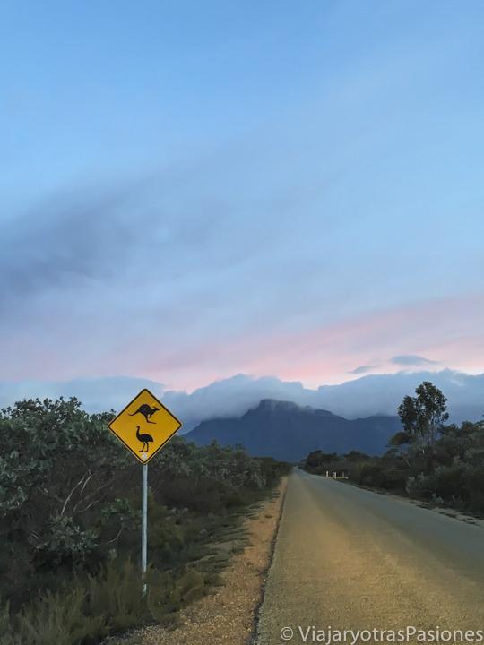 Imagen nocturna de una carretera australiana