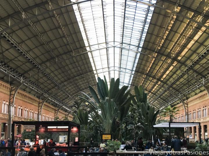Hermoso detalle del interior de la estación de Atocha en Madrid, España