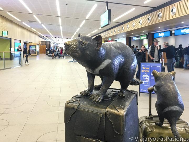 Estatuas de animales típicos de Tasmania en al aeropuerto de Hobart en Australia