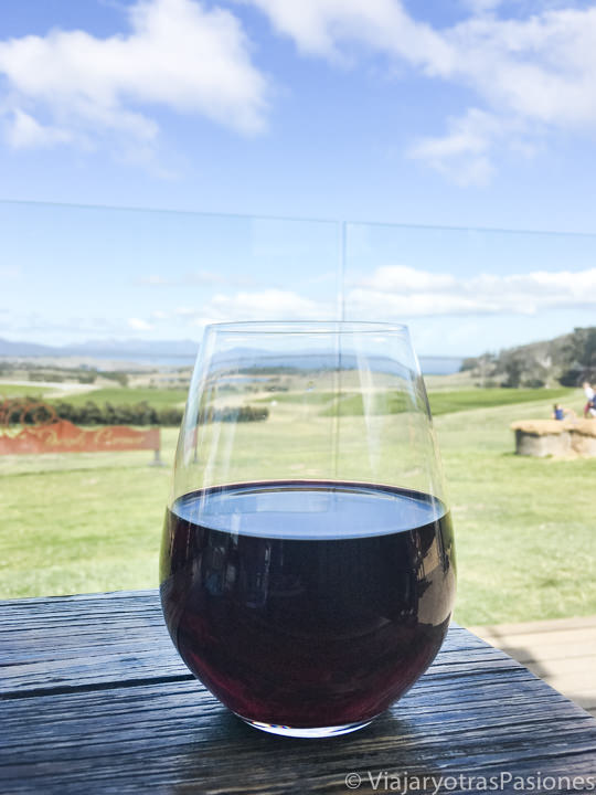Copa de vino típico e Tasmania, Australia