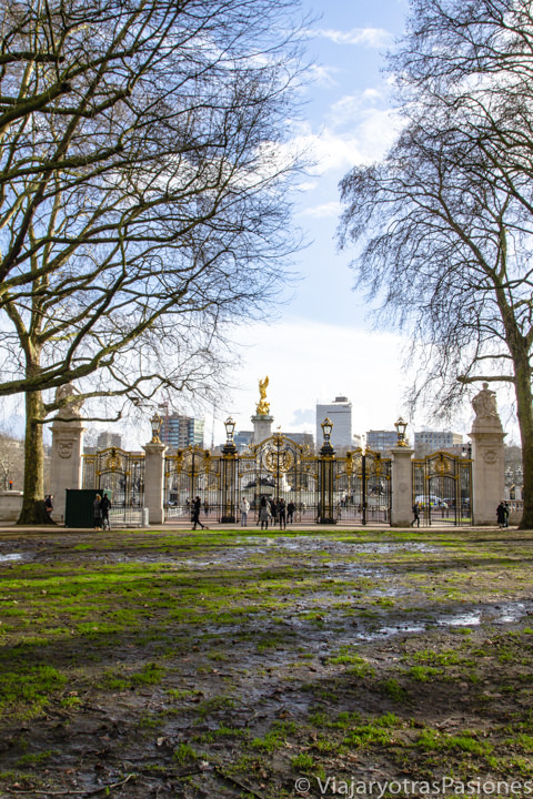 Vista de la plaza de Buckingham Palace desde el parque de Green Park en Londres