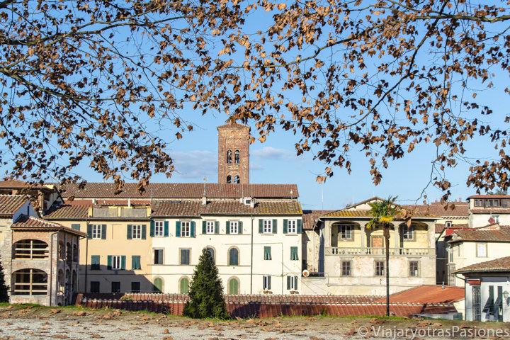 Espectacular panorama de Lucca desde le Mura de la ciudad, en Toscana