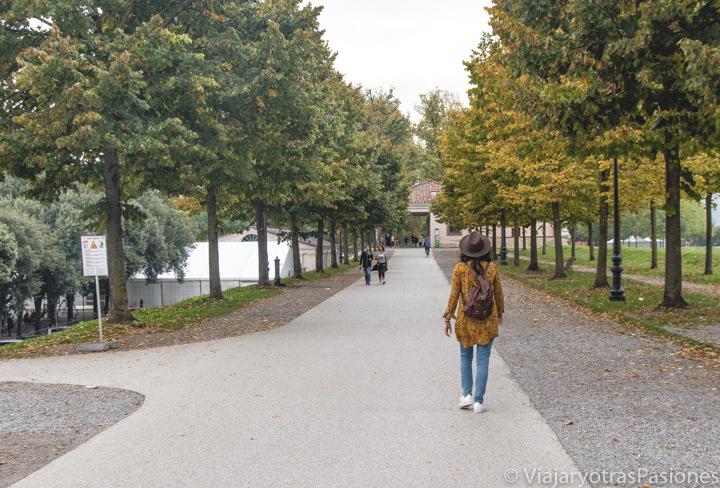 Vista del famoso paseo de le Mura di Lucca en Toscana, Italia