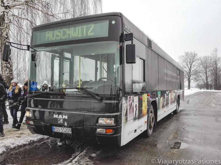 Vista del autobús que une los campos de Auschwitz y Birkenau, en Polonia