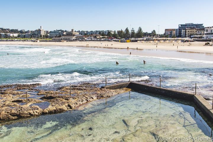 Imagen de la bonita rockpool y su agua transparente en North Bondi, Sydney