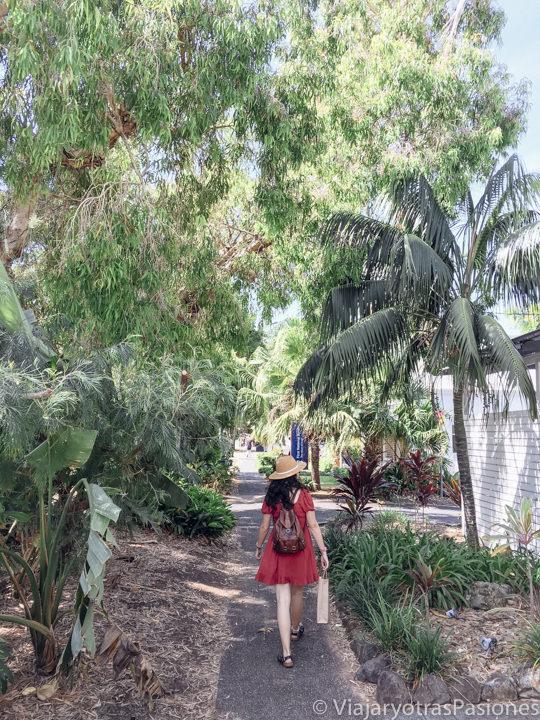 Callejeando en el centro de Byron Bay, Australia
