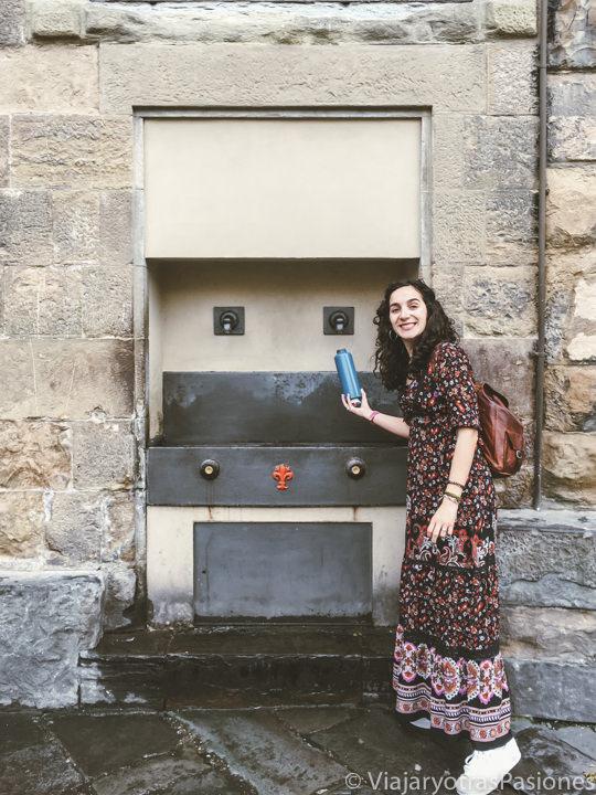 Fuente publica cerca del Palazzo Vecchio de Florencia, Italia