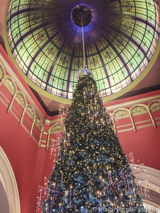 Bonito árbol de Navidad en el Queen Victoria Building en Sydney