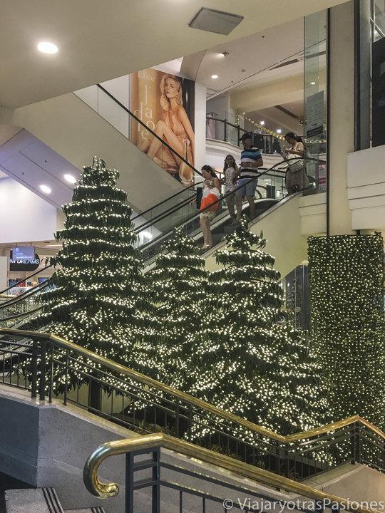 Arboles de Navidad en el centro comercial Westfield de Sydney, Australia