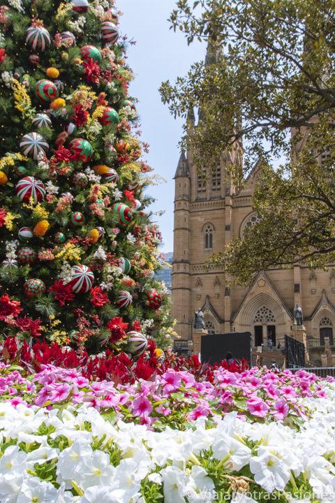 Hermosa decoración de Navidad frente a la Catedral de Sydney, Australia