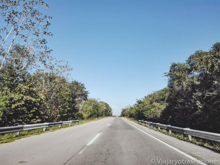 Carretera en el medio de la Península de Yucatán en México