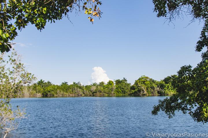 Panorama del famoso cenote azul, a las afueras de Bacalar, México