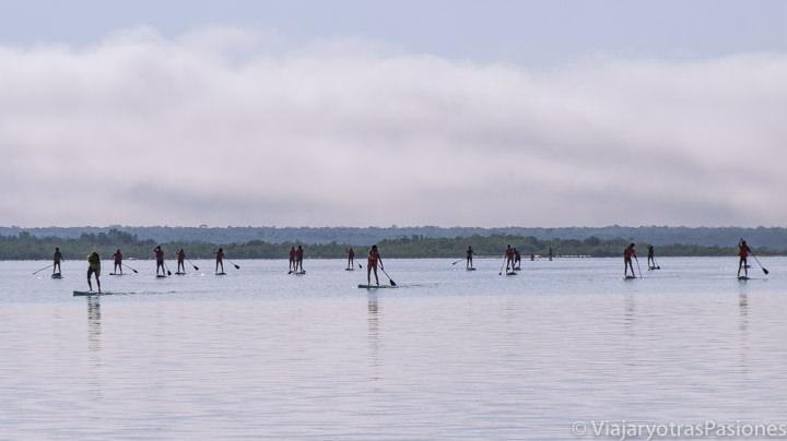 Grupo haciendo paddle surf en la Laguna Bacalar, México