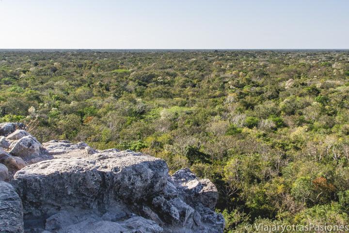 Hermoso paisaje desde la piramida de Cobá en México