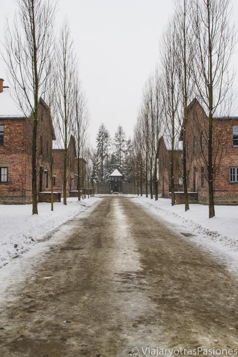 Típica calle del campo de concentración de Auschwitz, Polonia
