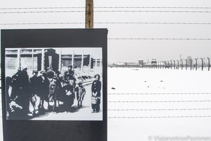 Foto antigua en el campo de Birkenau en Polonia
